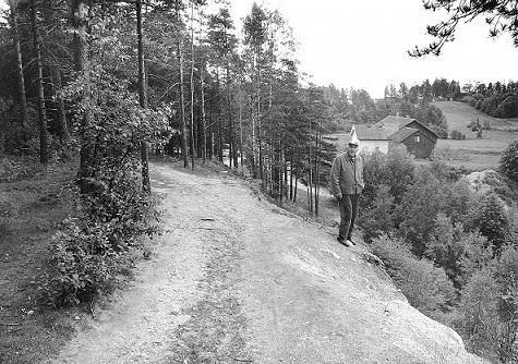Gamle Kongevei ved Haraldstad