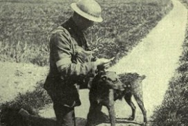 Tysk soldat med hund