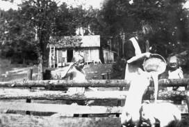 Mating av griser på Sørbysetra i Trømborgfjella i Eidsberg i 1919. Aagot Trømborg (g. Klerud) mater griser. Jentene Gerd og Edith fra Drammen ser på. Foto: Johan Svenneby.